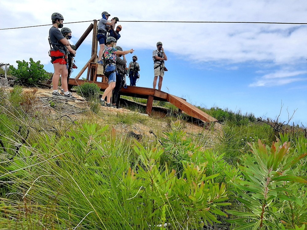 Ziplines exhilarating addition to Knysna's adventures